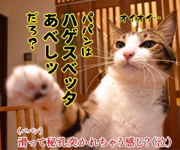 初詣のお願いはなにかしら? 猫の写真で4コマ漫画 4コマ目ッ