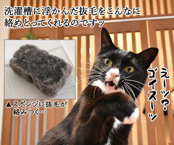 一緒に洗濯するだけで猫さんの毛を絡み取るスポンジがあるんですってッ 猫の写真で4コマ漫画 3コマ目ッ