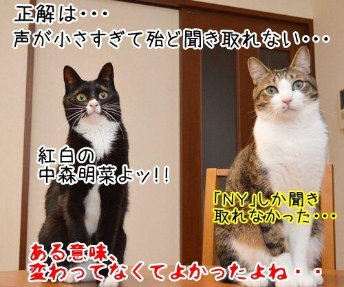 モノマネ当てクイズ 猫の写真で4コマ漫画 4コマ目ッ