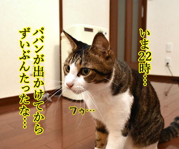 泣けちゃう漫画『おじさまと猫』って知ってる? 猫の写真で4コマ漫画 1コマ目ッ