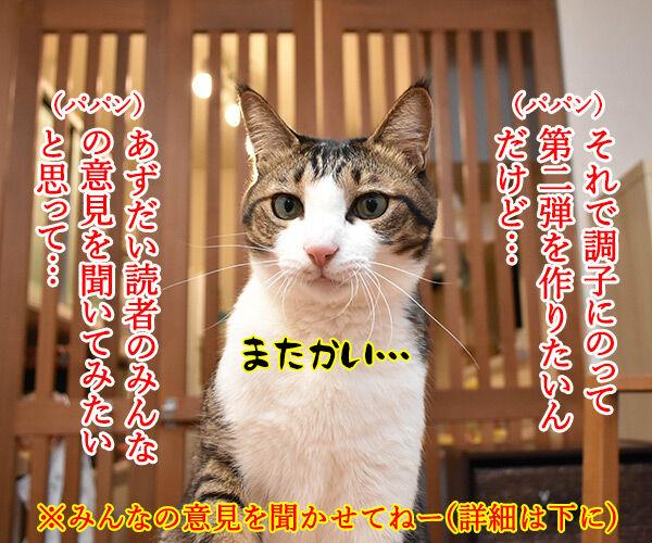 あずだいのLINEスタンプ 第二弾 猫の写真で4コマ漫画 2コマ目ッ