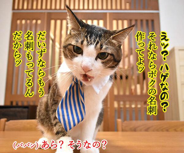 「ニャにもん」で名刺をつくったのよッ 猫の写真で4コマ漫画 3コマ目ッ