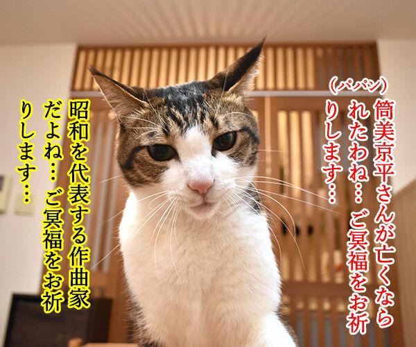 筒美京平さんのご冥福をお祈り申し上げます 猫の写真で4コマ漫画 1コマ目ッ