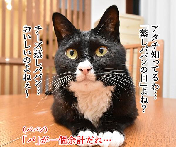 6月4日は何の日でしょうかッ? 猫の写真で4コマ漫画 2コマ目ッ