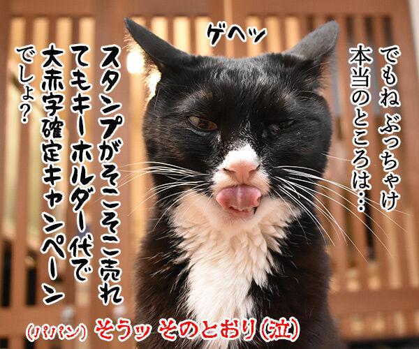 皆様に感謝の気持ちを込めて… キャンペーン第2弾なのよッ 猫の写真で4コマ漫画 4コマ目ッ