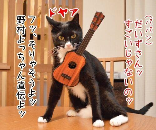音楽っていいねッ 猫の写真で4コマ漫画 2コマ目ッ