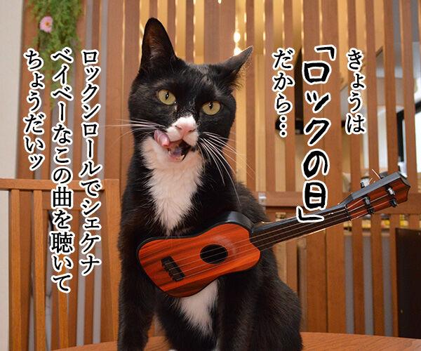 今日はロックの日だからシェケナベイベー 猫の写真で4コマ漫画 1コマ目ッ