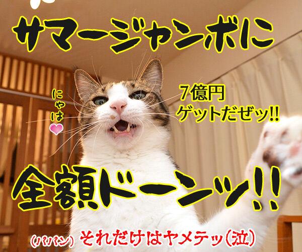 夏のボーナスキャンペーン開催中!! 猫の写真で4コマ漫画 4コマ目ッ