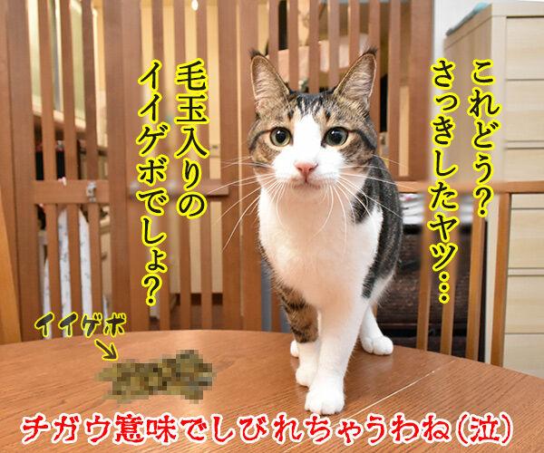 アタチ イケボにしびれちゃうのッ 猫の写真で4コマ漫画 4コマ目ッ