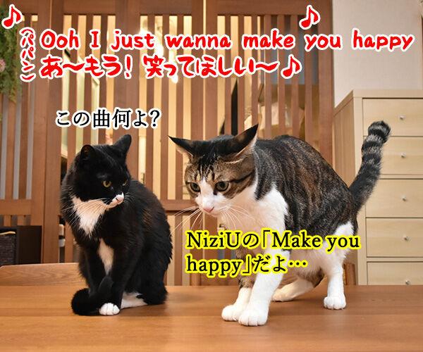 NiziUの『Make you happy』を唄うのよッ 猫の写真で4コマ漫画 1コマ目ッ