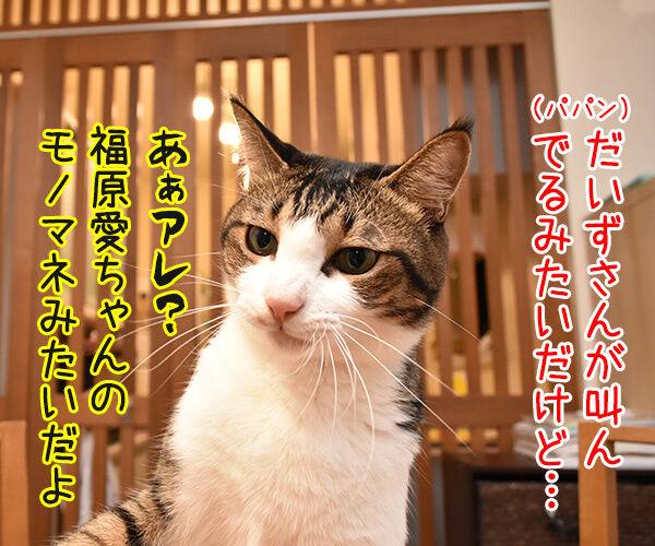 福原愛ちゃんがママになったんですってッ 猫の写真で4コマ漫画 2コマ目ッ