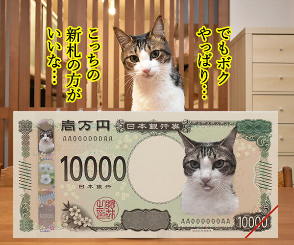 次はボクの新札だね… 猫の写真で4コマ漫画 2コマ目ッ
