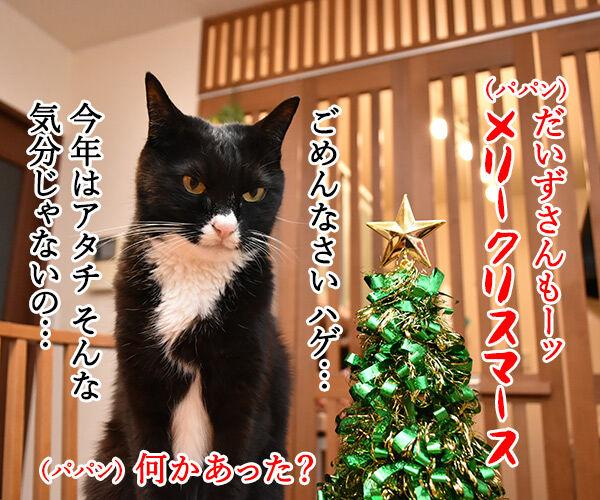 クリスマスにとってもとっても見たかったもの 猫の写真で4コマ漫画 2コマ目ッ