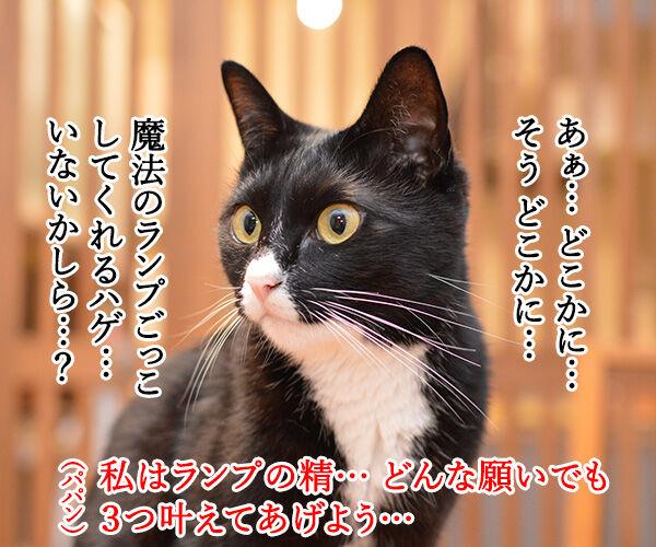 魔法のランプごっこがしたいのよッ 猫の写真で4コマ漫画 1コマ目ッ