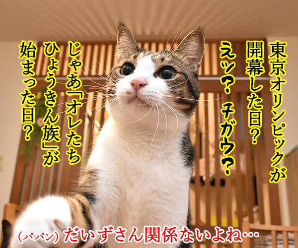 きょうは何の日? アタチの日ッ 猫の写真で4コマ漫画 2コマ目ッ