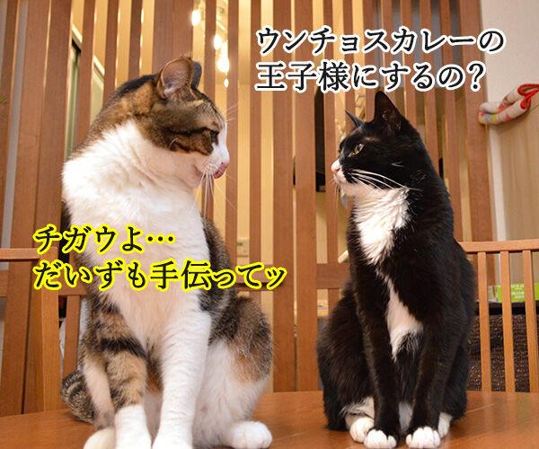 流し目王子に飽きちゃったから 猫の写真で4コマ漫画 3コマ目ッ