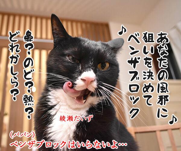 あなたの風邪はどこから? 猫の写真で4コマ漫画 2コマ目ッ