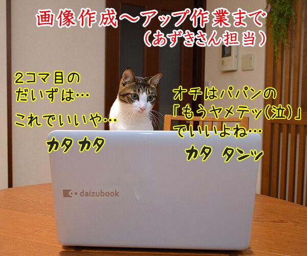 4コマのつくりかた 猫の写真で4コマ漫画 3コマ目ッ