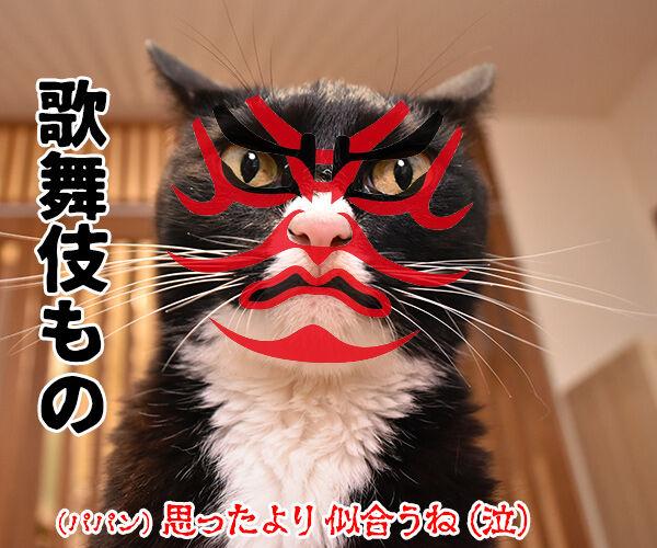 今までにした『かぶりもの』を集めてみたよッ 猫の写真で4コマ漫画 6コマ目ッ