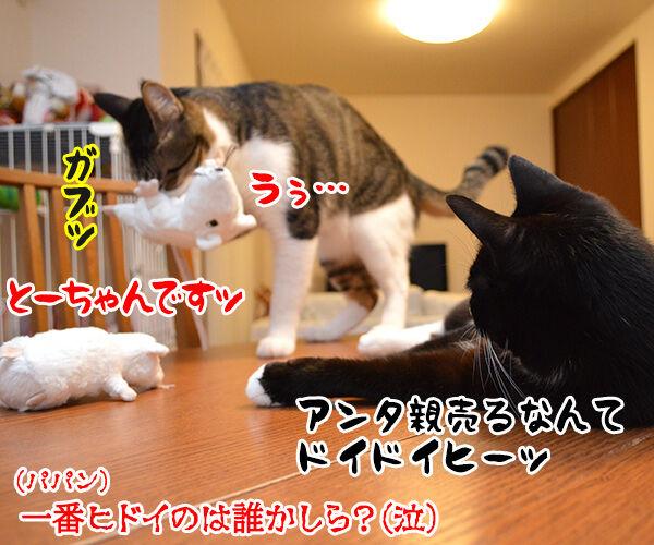 いたずらしちゃおッ 猫の写真で4コマ漫画 5コマ目ッ