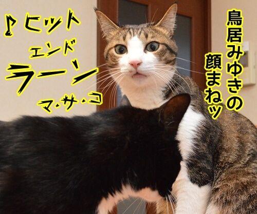 ネタ見せ 其の二 猫の写真で4コマ漫画 3コマ目ッ