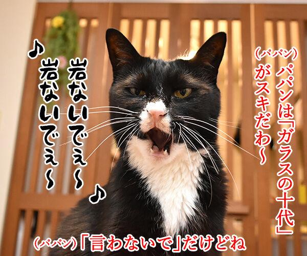 光GENJIのあの曲は? 猫の写真で4コマ漫画 2コマ目ッ