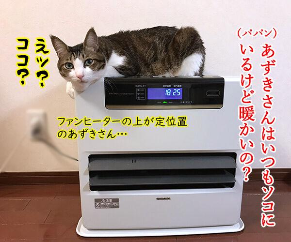 ファンヒーターのそれぞれの定位置 猫の写真で4コマ漫画 3コマ目ッ