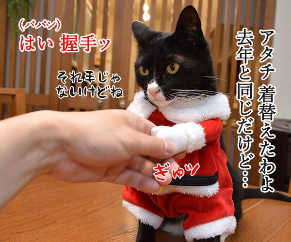 そろそろクリパをはじめましょうか 猫の写真で4コマ漫画 2コマ目ッ