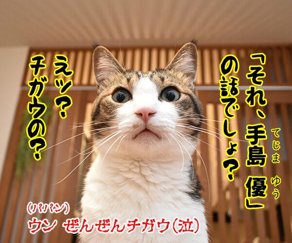 『俺、つしま2(ツー)』の2巻が出たのよッ 猫の写真で4コマ漫画 4コマ目ッ