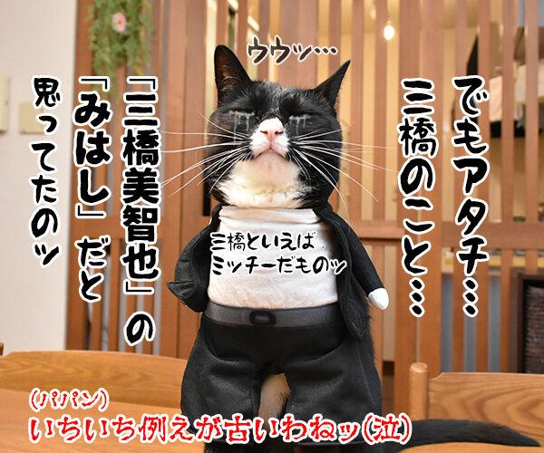 『今日から俺は!!』の三橋って… 猫の写真で4コマ漫画 4コマ目ッ