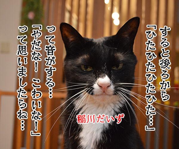 パパンちの怪談 猫の写真で4コマ漫画 1コマ目ッ