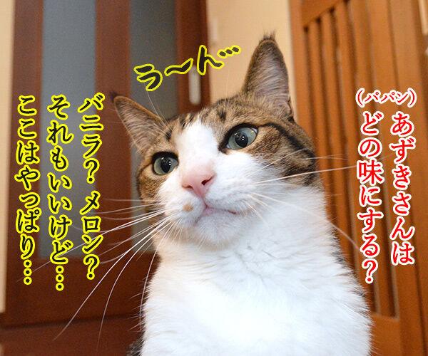 アイス買ってきたけど食べる? 猫の写真で4コマ漫画 3コマ目ッ
