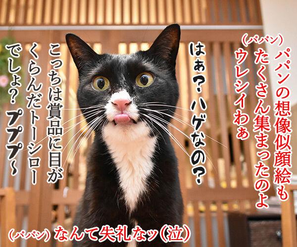 ブログのロゴを変えてみたのよッ 猫の写真で4コマ漫画 3コマ目ッ
