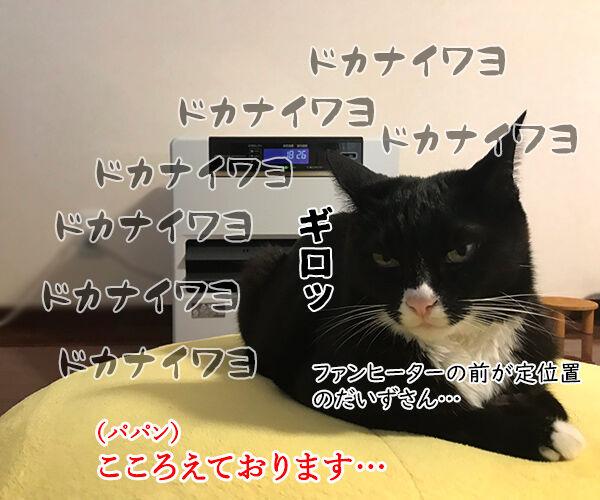 ファンヒーターのそれぞれの定位置 猫の写真で4コマ漫画 2コマ目ッ