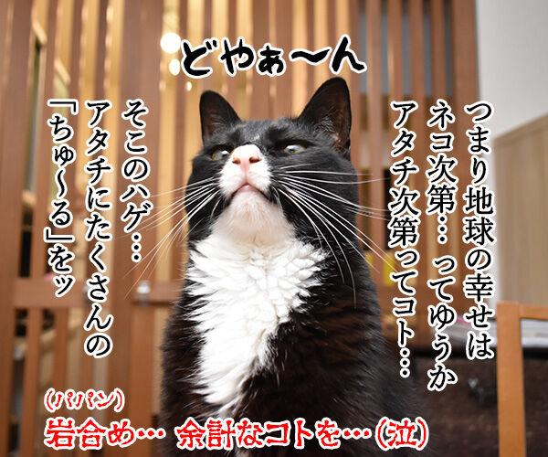 『劇場版 岩合光昭の世界ネコ歩き』は本日公開なのッ 猫の写真で4コマ漫画 4コマ目ッ