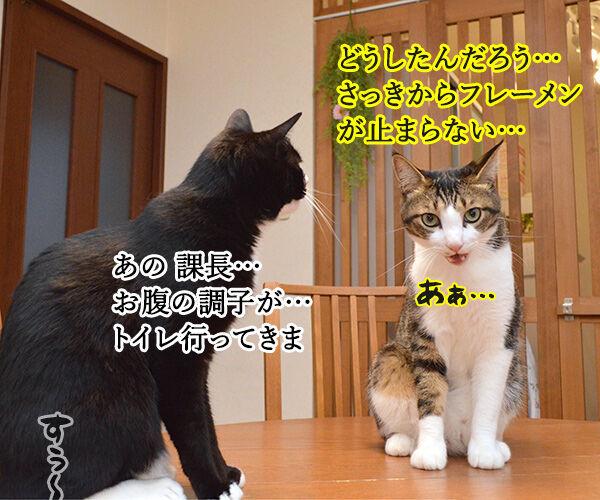 OLだいずの大失敗 猫の写真で4コマ漫画 4コマ目ッ