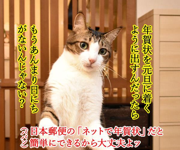 『あずだいを拡散してくれたら 年賀状を送っちゃうわよー キャンペーン』応募してねーッ 猫の写真で4コマ漫画 2コマ目ッ