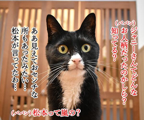 ジャニー喜多川さんのご冥福を心よりお祈り申し上げます 猫の写真で4コマ漫画 3コマ目ッ