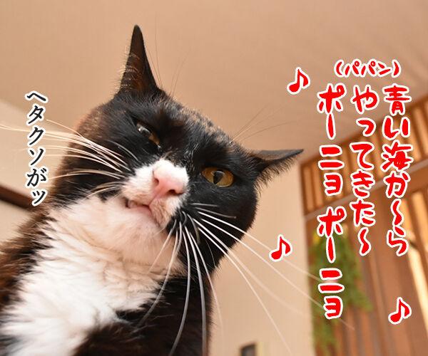 パパン 崖の上のポニョ 唄いますッ 猫の写真で4コマ漫画 2コマ目ッ