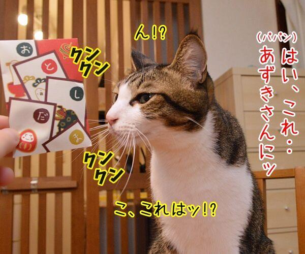 お正月だからあずだいにお年玉あげるわよッ 猫の写真で4コマ漫画 3コマ目ッ