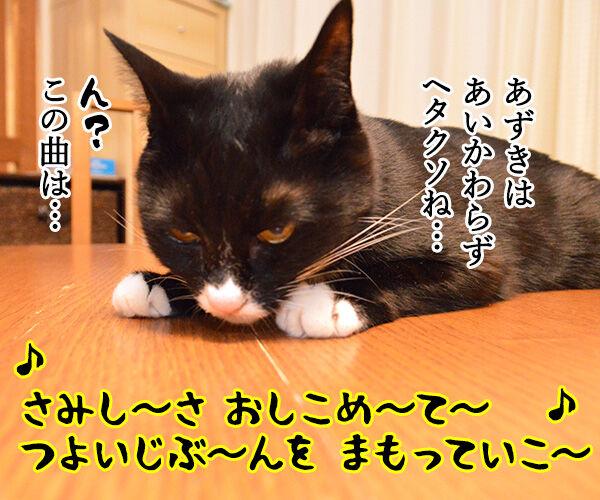 耳をすませば カントリーロード 猫の写真で4コマ漫画 3コマ目ッ
