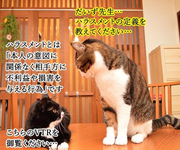 ハラスメントの定義を教えてください 猫の写真で4コマ漫画 1コマ目ッ