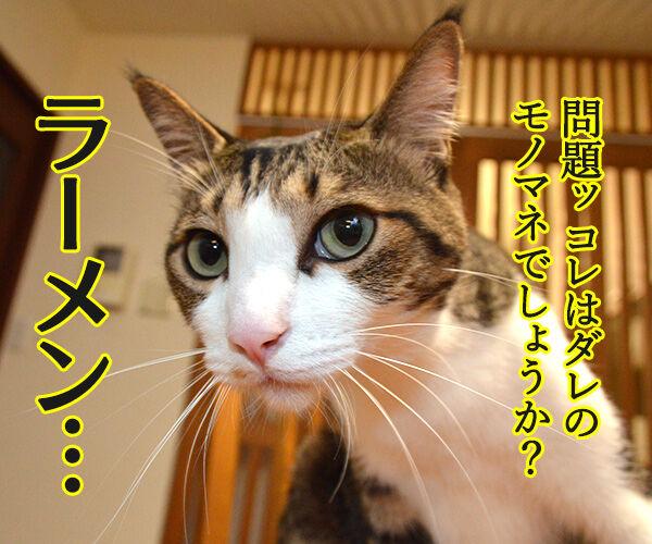 ダレのモノマネでしょうかッ? 猫の写真で4コマ漫画 1コマ目ッ