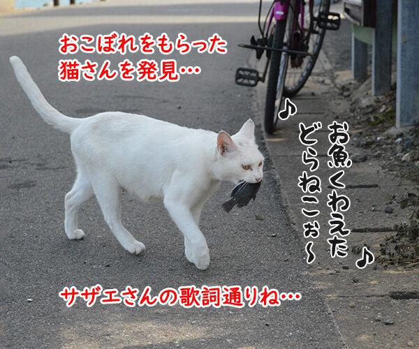 猫島 其の三 猫の写真で4コマ漫画 2コマ目ッ