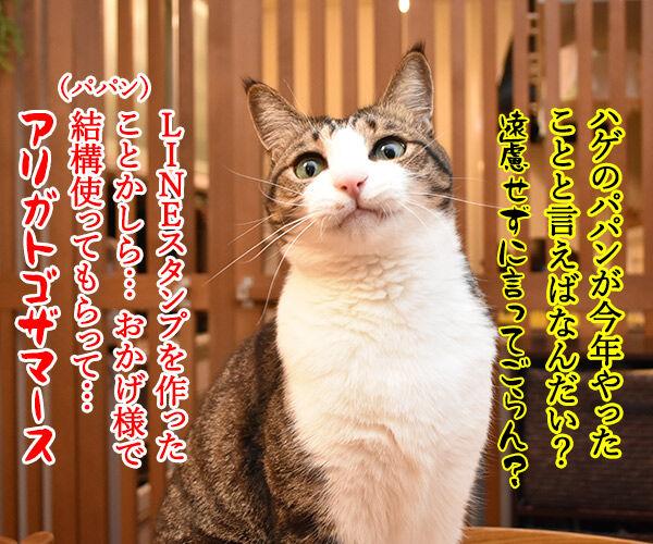 あずだいのLINEスタンプ 第二弾 猫の写真で4コマ漫画 1コマ目ッ