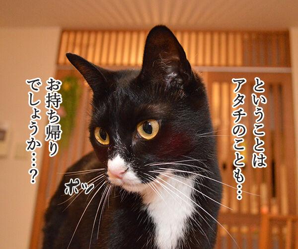 ハンバーガーショップ 猫の写真で4コマ漫画 3コマ目ッ