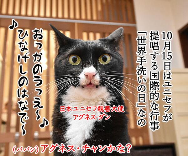 10月15日は『世界手洗いの日』なんですってッ 猫の写真で4コマ漫画 1コマ目ッ