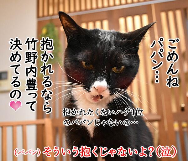 猫さんの上手な抱き上げ方って? 猫の写真で4コマ漫画 4コマ目ッ