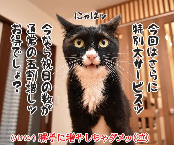 あずだいカレンダー 販売開始デースッ 猫の写真で4コマ漫画 4コマ目ッ