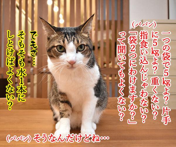 コンビニの袋詰めの話なのよッ 猫の写真で4コマ漫画 2コマ目ッ